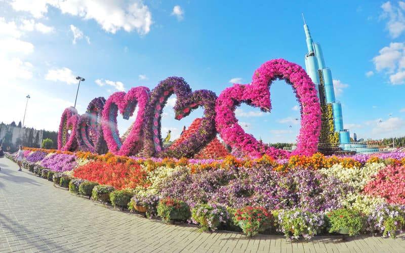 Miracle Garden de Dubaï top 6 des activités à Dubaï